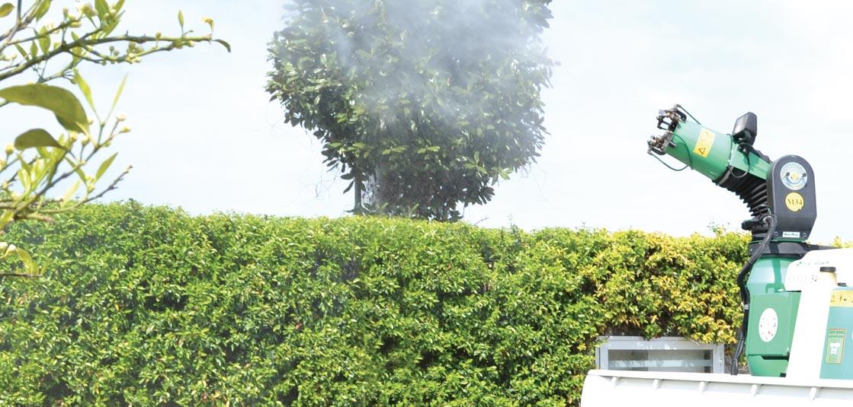 Le zanzare sono un vero tormento. La diffusione della zanzara tigre è tipicamente urbana e sfrutta piccoli ristagni d'acqua per moltiplicarsi. Per impedire l'infestazione è necessario effettuare monitoraggi continui e trattamenti adeguati.