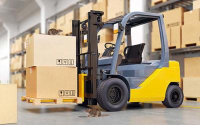 Derattizzazione Logistica ed aree di stoccaggio